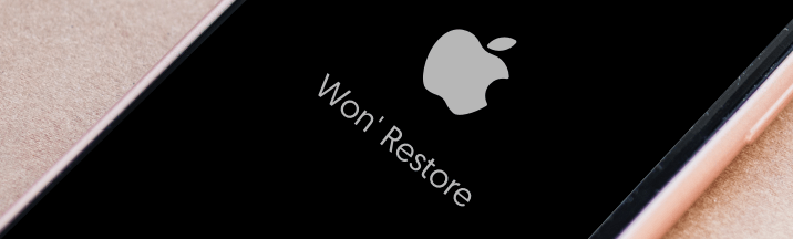 Tenorshare ReiBootは復元できないiPhone・iPad・iPod touchを修復可能